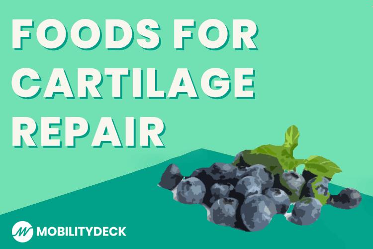 Foods For Rebuilding Cartilage